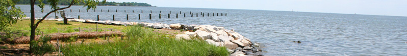 Chesapeake Bay Watershed Shoreline Protection